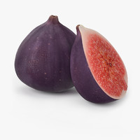 max realistic figs fruit real