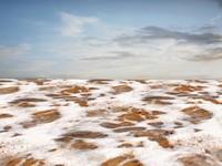 Beach foam 19