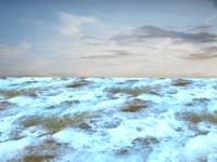 Beach foam 18