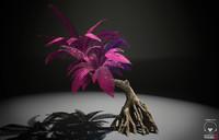 3d model alien fern