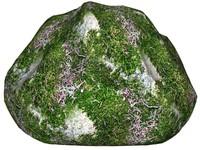 Mossy rock 28
