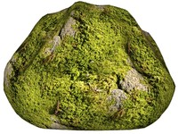 Mossy rock 27