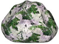 Mossy rock 29
