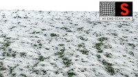 3d model of grass snow scanned