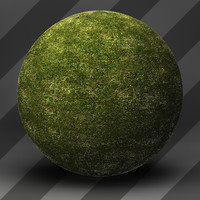 Grass Landscape Shader_019