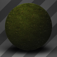 Grass Landscape Shader_029