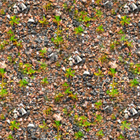 Gravel and weeds 2