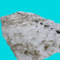3d walk path snow