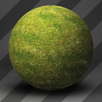 Grass Landscape Shader_050
