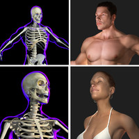 ultimate x-ray anatomy pack 3d model