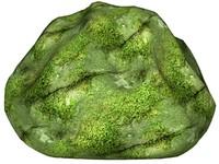 Mossy rock 32