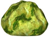 Mossy rock 31