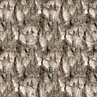 Tree bark 58