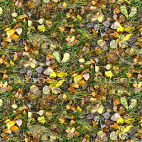 Grass with autumn leaves 21