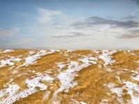 Beach foam 24