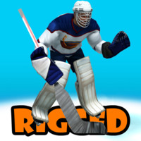 3d hockey goalkeepr