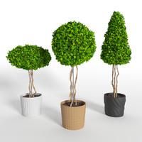 3 tree 3d max