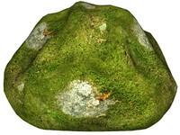 Mossy rock 39