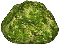 Mossy rock 42