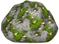 Mossy rock 44