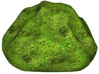 Mossy rock 43