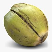 green coconut 2 3d model