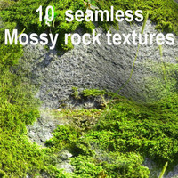 Mossy Rock Collection 2