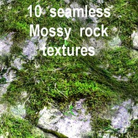 Mossy Rock Collection 3