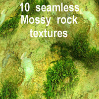 Mossy Rock Collection 4