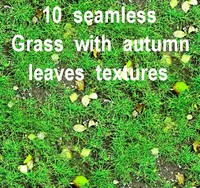 Grass with Autumn Leaves Collection 2