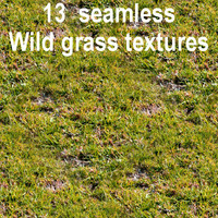 Wild Grass Collection 1