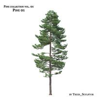 pine-tree tree 3d max