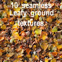 Leafy Ground Collection 2