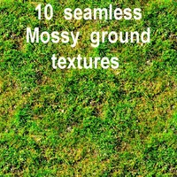 Mossy Ground Collection 2