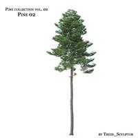 pine-tree tree max