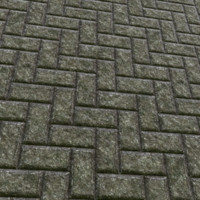Block Pavement Texture