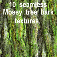 Mossy Tree Bark Collection 2