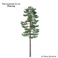 max pine-tree tree