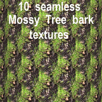 Mossy Tree Bark Collection 3