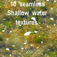 Shallow Water Collection 3