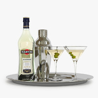 martini bottle shaker glasses max