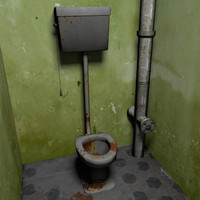 3d dirty toilet dirt model