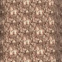 Tree bark 64