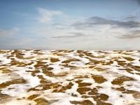Beach foam 28