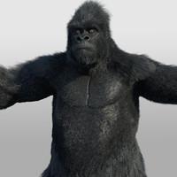 ape primate gorilla 3d model
