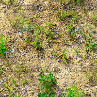 Sand with grass 9