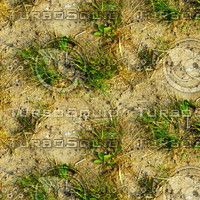 Sand with grass 8