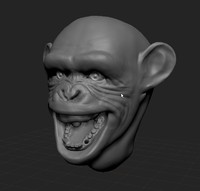 chimp_head