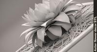 stl aster flower 3d max