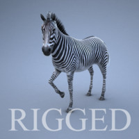 3ds max zebra rig